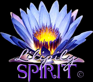 LILIPILY SPIRIT